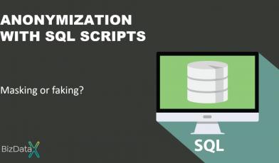 Ekobit-BizDataX-anonymization with SQL scripts - masking or faking